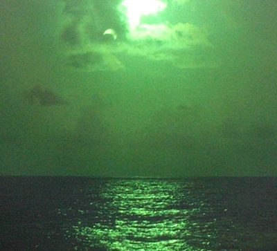 parcial_verde (1).jpg